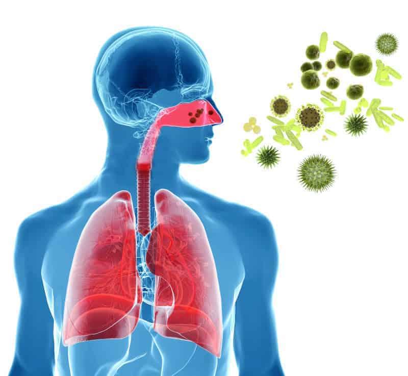 allergia pollini lavaggi nasali sinh2ox